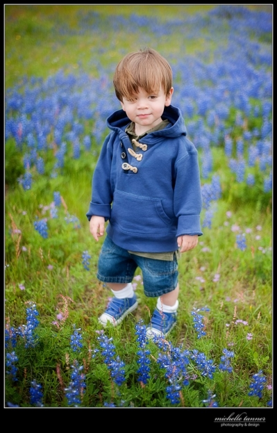 boy-blue-bonnets