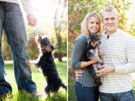 Engagement Pictures Including Dog